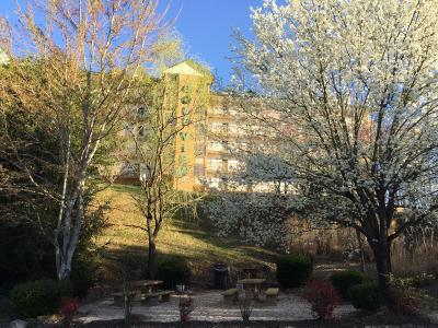 Pigeon Forge Condo/Townhouse For Sale: 818 Golf View Blvd #1204