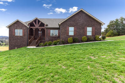 Single Family Home For Sale: 3148 Sagegrass Drive