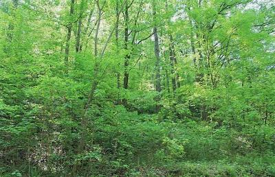 Seymour Residential Lots & Land For Sale