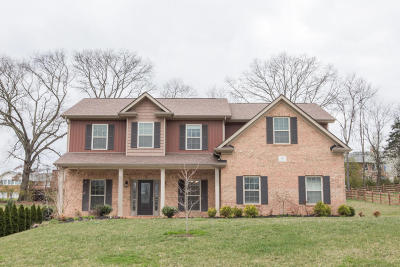 Knoxville Single Family Home For Sale: 315 Cashmere Lane