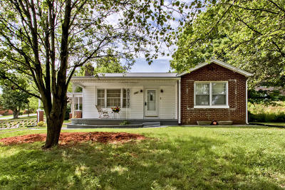 Loudon County Single Family Home For Sale: 1303 E Broadway St