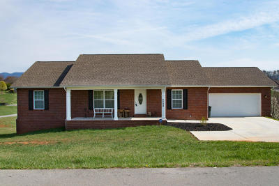 Maryville Single Family Home For Sale: 4208 Pea Ridge Rd
