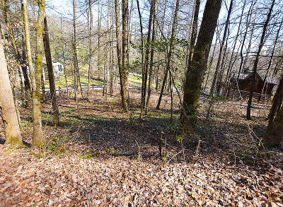 Gatlinburg Residential Lots & Land For Sale: Lot 38-A Wild Ivy Way