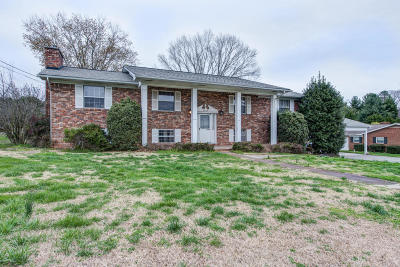 Powell Single Family Home For Sale: 4845 Macmont Circle