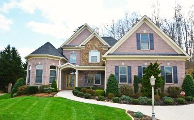 Knoxville Single Family Home For Sale: 1239 Barton Place Lane