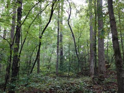 Maryville Residential Lots & Land For Sale: Highland Rd