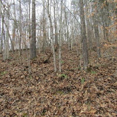 Residential Lots & Land For Sale: Arthur Hill Circle Off Of Tn