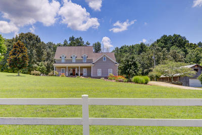 Knoxville Single Family Home For Sale: 11722 Hardin Valley Rd
