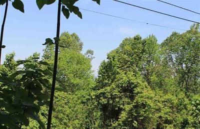 Gatlinburg Residential Lots & Land For Sale: Stans Rd