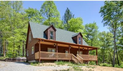 Union County Single Family Home For Sale: 100 Mountain Way