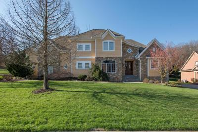 Knoxville Single Family Home For Sale: 1817 Calgary Falls Lane