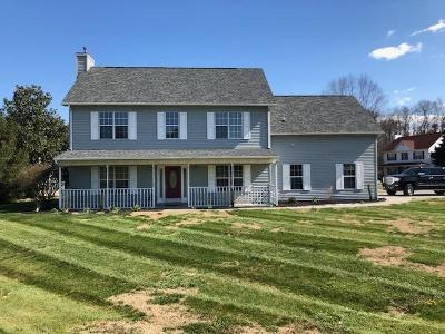 Sevierville Single Family Home For Sale: 1252 Blake Lea