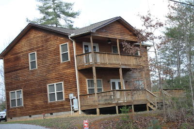 Sevierville Single Family Home For Sale: 3465 Old Mountain Rd