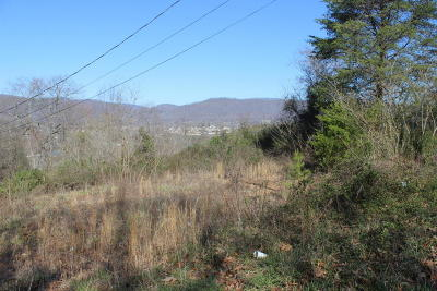 Residential Lots & Land For Sale: 182 Blue Springs Rd