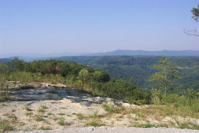 Campbell County Residential Lots & Land For Sale: McClouds Tr