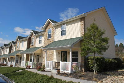 Sevierville Single Family Home For Sale: 524 Allensville Rd #28
