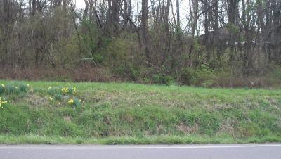 Residential Lots & Land Sold: Chilhowee School Road