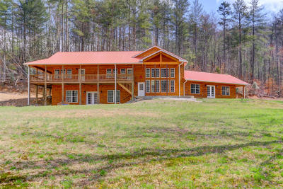 Oliver Springs Single Family Home For Sale: 393 Back Valley Rd