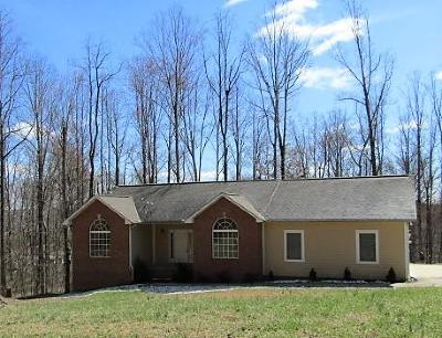 Caryville Single Family Home For Sale: 712 Cove Norris Rd