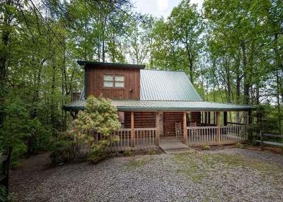 Sevierville Single Family Home For Sale: 1011 Elm Circle