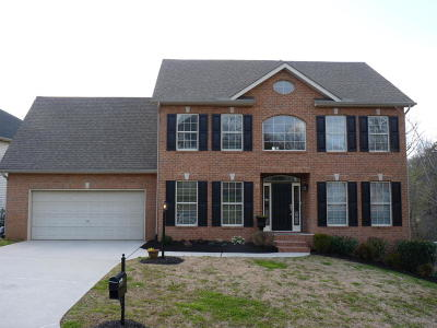 Knoxville TN Single Family Home For Sale: $294,755