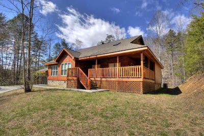 Sevierville Single Family Home For Sale: 4255 Powdermill Estates Rd