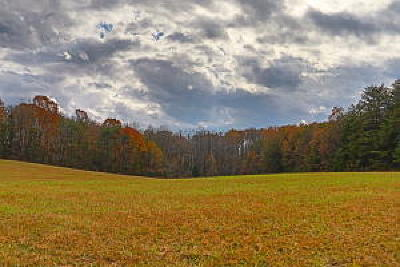 Loudon County Residential Lots & Land For Sale: Us Hwy 411