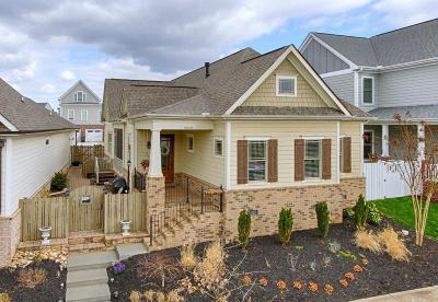 Knoxville Single Family Home For Sale: 9609 Clingmans Dome Drive