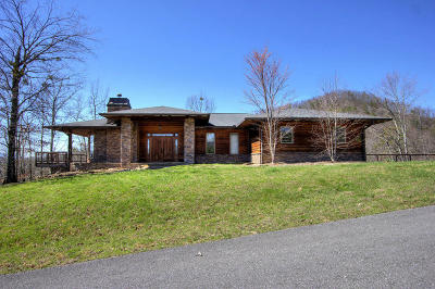 Sevier County Single Family Home For Sale: 1441 Mountain Ash Way