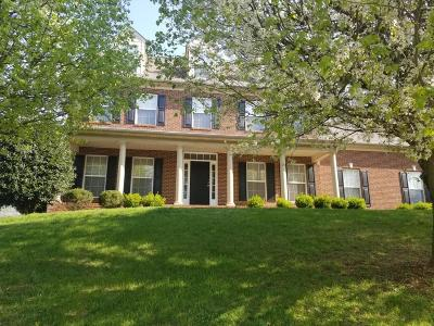 Knoxville Single Family Home For Sale: 312 Windham Hill Rd