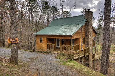 Sevierville Single Family Home For Sale: 3666 Marshall Lane