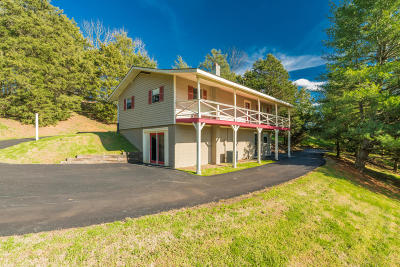 Sevierville Single Family Home For Sale: 1420 Twin Oaks Rd