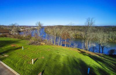 Lenoir City Residential Lots & Land For Sale: 229 Waters Edge Way