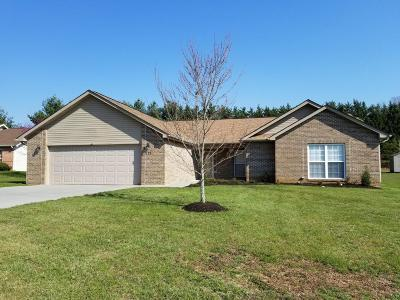Maryville Single Family Home For Sale: 118 Firefly Lane
