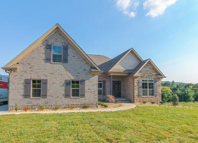 Lenoir City Single Family Home For Sale: 336 Fieldstone Drive