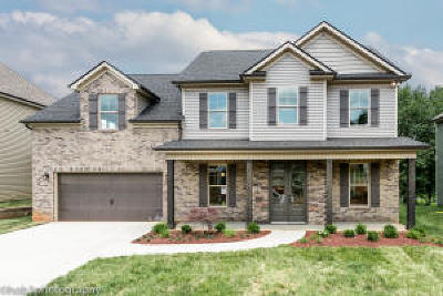 Knoxville TN Single Family Home For Sale: $346,000