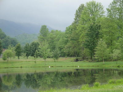 Sevier County Residential Lots & Land For Sale: 14 Mill Creek Rd