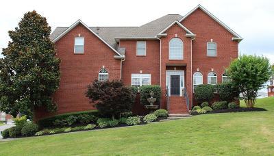 Powell Single Family Home For Sale: 7927 Cedar Stone Lane