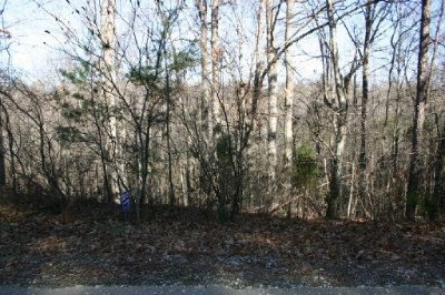 Loudon County Residential Lots & Land For Sale: 133 Sasa Way