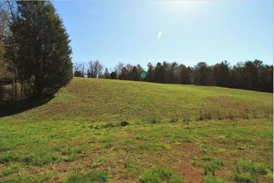 Residential Lots & Land For Sale: 162 Thunder Ridge Dr.