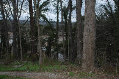 Meigs County, Rhea County, Roane County Residential Lots & Land For Sale: Bream Lane