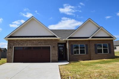 Sevier County Single Family Home For Sale: 1227 Beaumont Ave