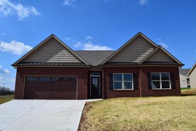 Sevier County Single Family Home For Sale: 1219 Beaumont Ave