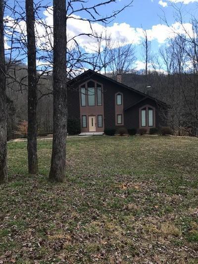 Cocke County Single Family Home For Sale: 3839 Bear Track Way