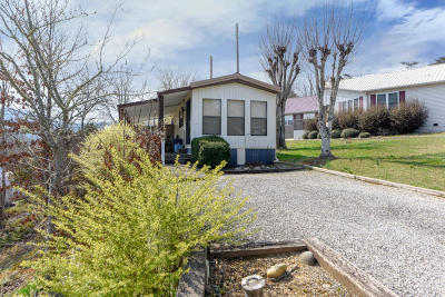 Townsend Single Family Home For Sale: 1022 Kildee St