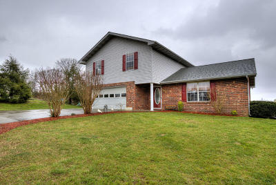 Sevier County Single Family Home For Sale: 3018 Sugarwood Drive