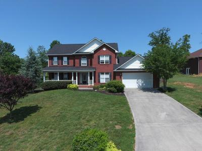 Sevierville Single Family Home For Sale: 1540 Ellis Woods Loop