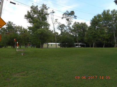 Knoxville TN Residential Lots & Land For Sale: $250,000
