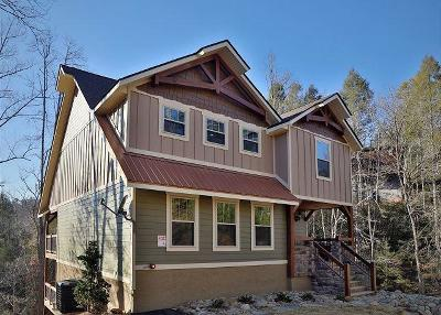 Gatlinburg Single Family Home For Sale: 1113 Anastasia Way
