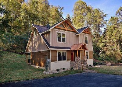 Gatlinburg Single Family Home For Sale: 1136 Anastasia Way